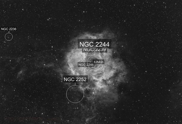NGC 2237/38/39/44/46 Rosette Nebula and Open Star Cluster BW (Theli Red v1)