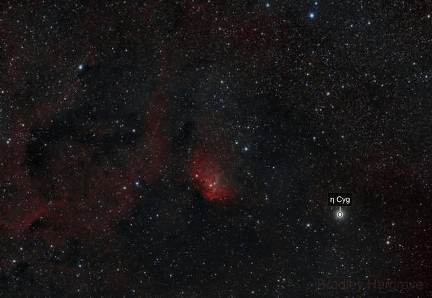 Tulip Nebula Widefield RGBHaOIII