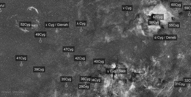 Widefield Cygnus
