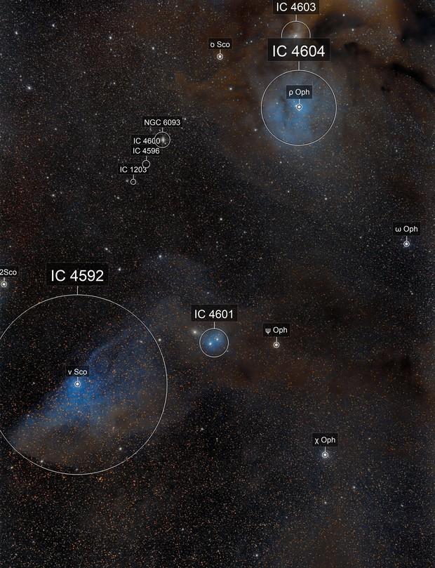 IC 4592 - The Blue Horsehead & IC 4604 Rho Oph Nebula
