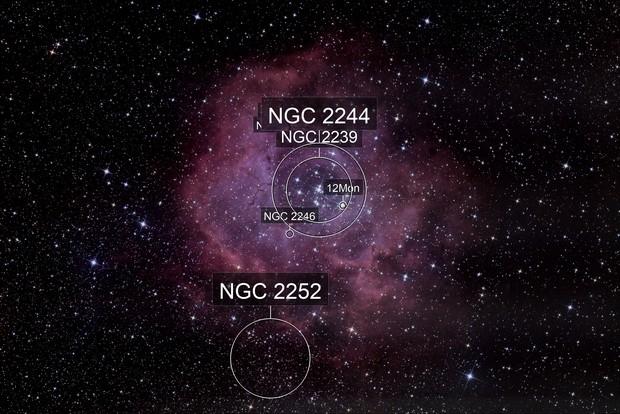 NGC 2244 La Rosette