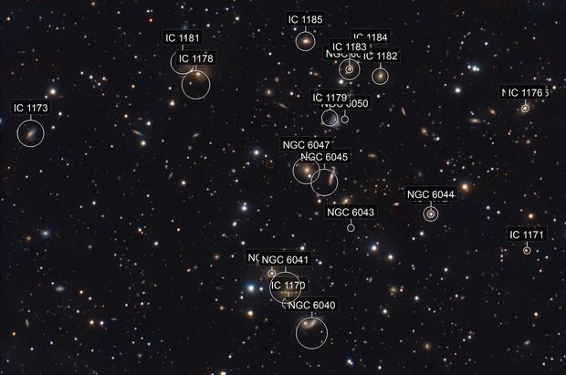Abell 2151 - Galaxies in Hercules