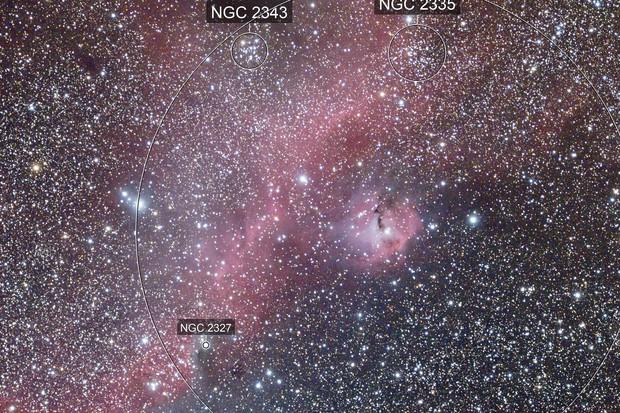 IC2177
