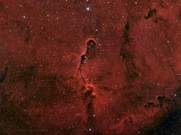 Elephant's Trunk Nebula (HaRGB)