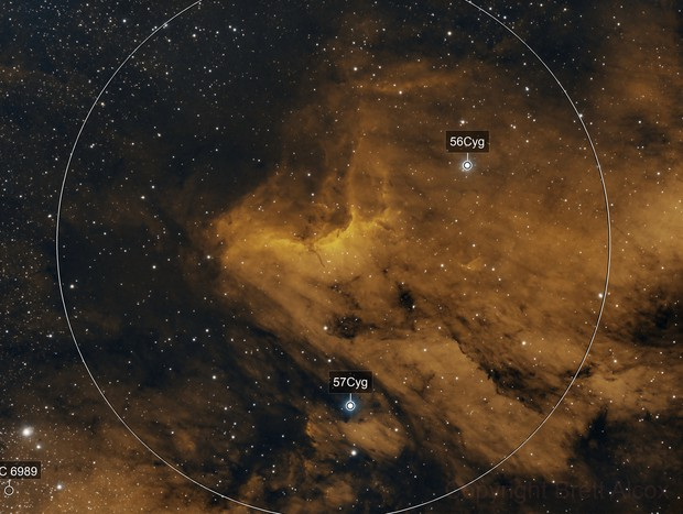 IC 5070 (Pelican Nebula) Bicolor