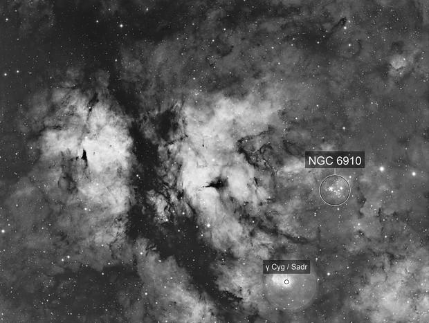 Gamma Cygni region in H-Alpha