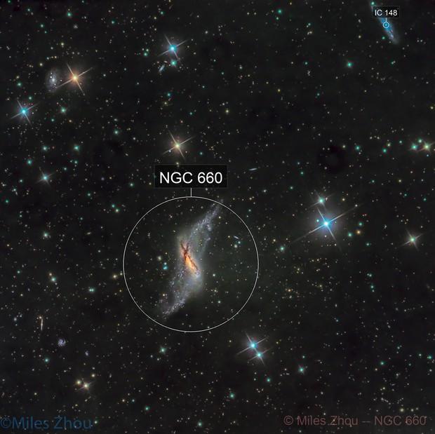 NGC 660 @ DSW