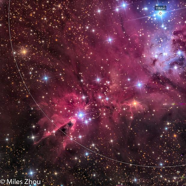 Cone Nebula (NGC 2264) @ DSW
