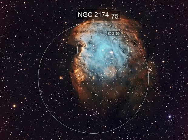 NGC 2175 Monkey Head Nebula SHO - Esprit 120 - ASI1600MM