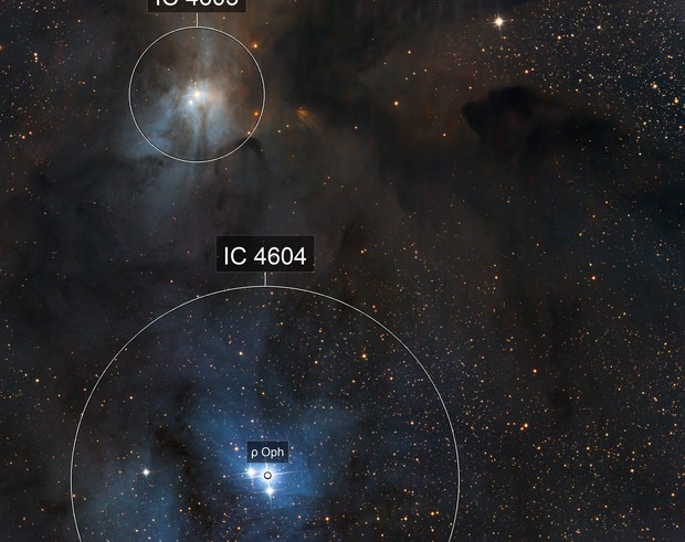 IC4603&4604