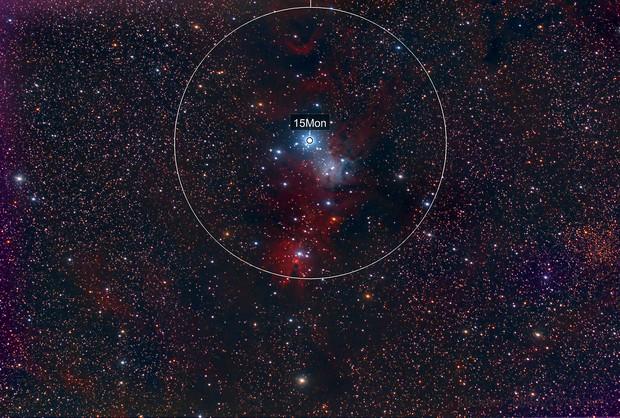 NGC 2264 - Christmas Tree Cluster and Cone Nebula Redux
