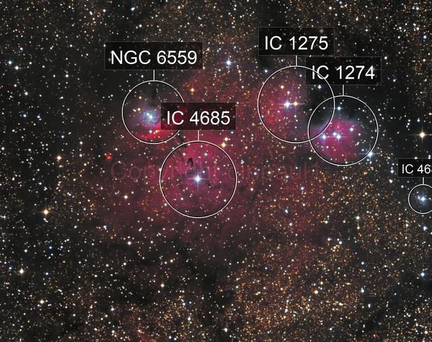 NGC 6559