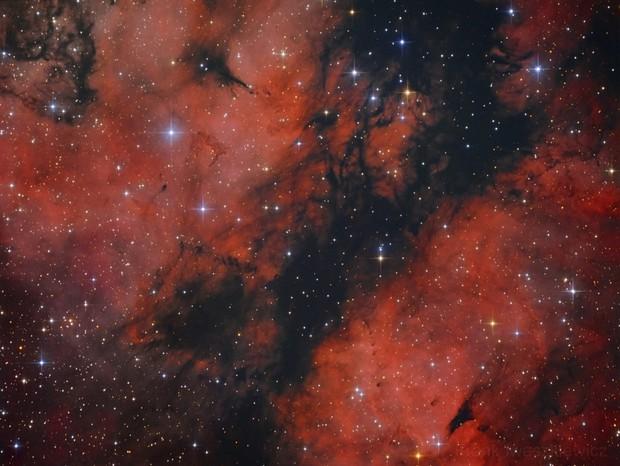 IC 1318 B/C Butterfly Nebula
