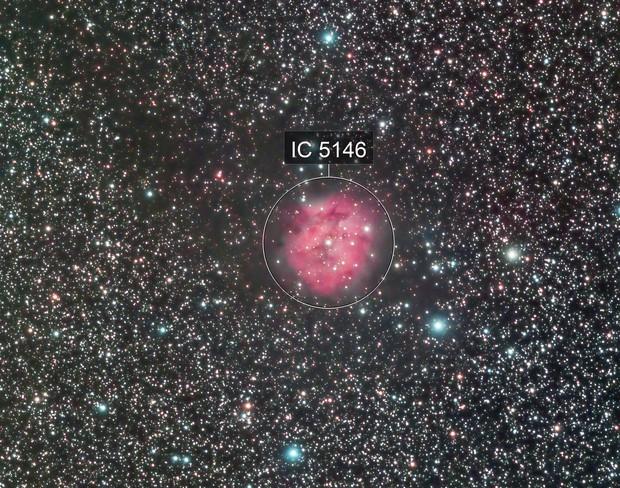 Cocoon Nebula of my dreams