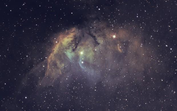 Tulip Nebula  Sh2-101