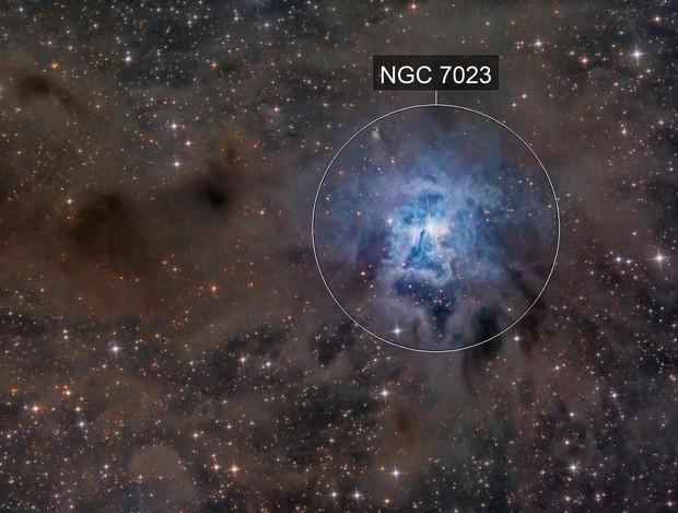 The Iris Nebula (NGC 7023)