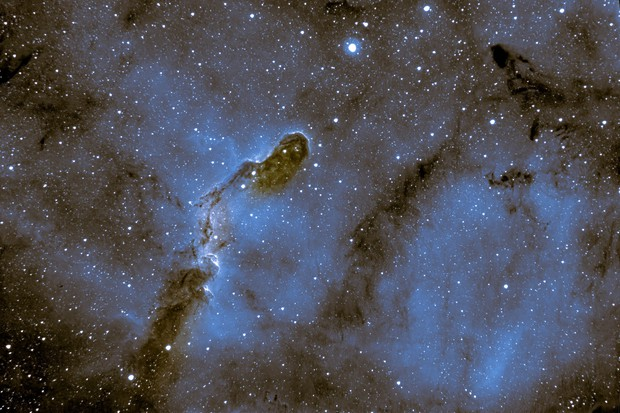 Elephant Trunk Nebula