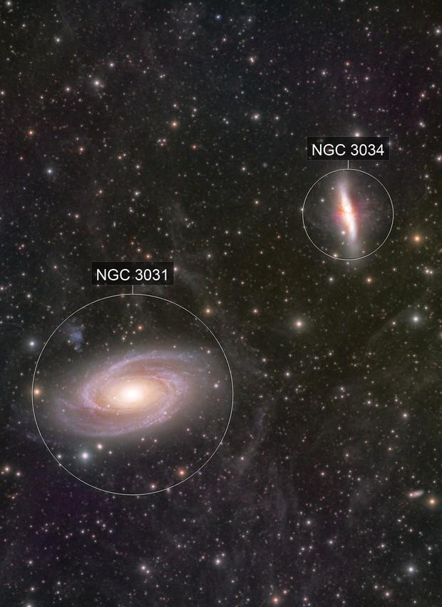 M81 M82+IFN