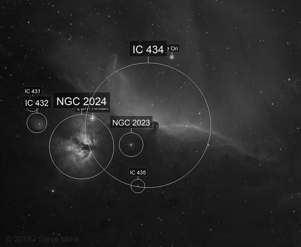 Horsehead Nebula - Widefield Ha