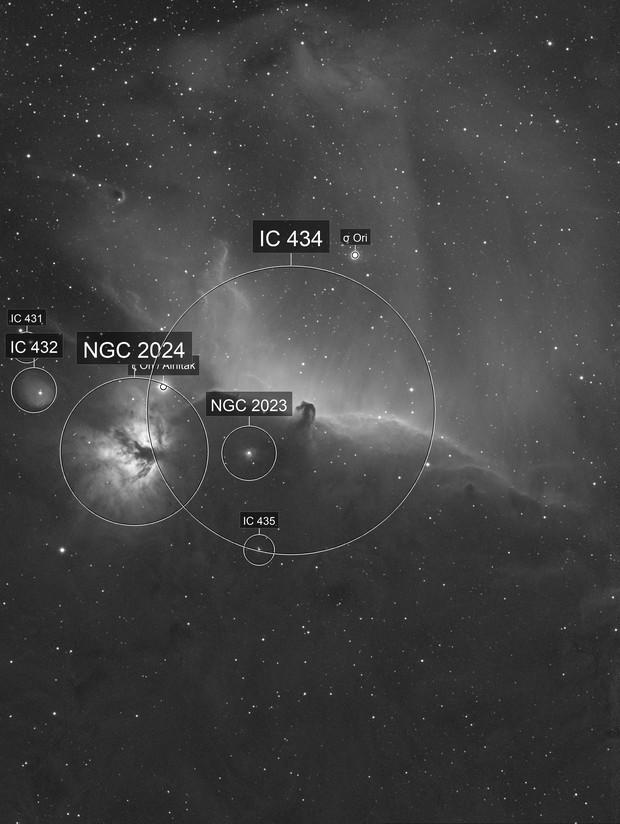 IC434 in Ha
