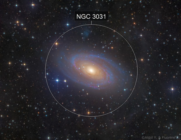 M81 with IFN~