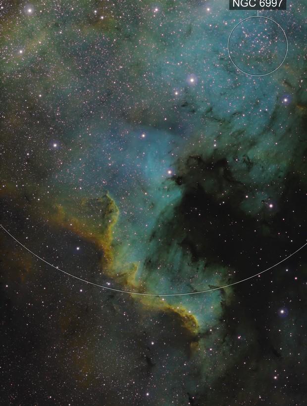 North American Nebula Narrowband