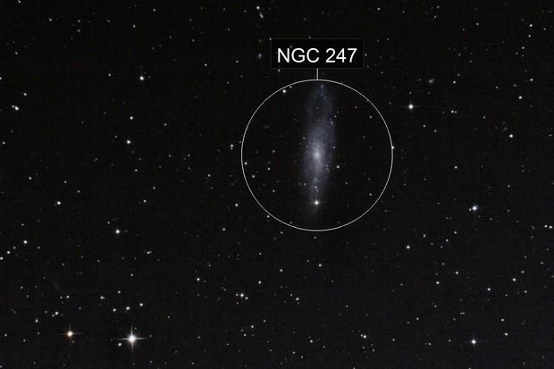 NGC 247 y Cadena de Burbidge