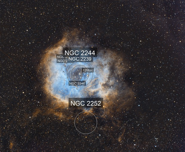Caldwell 49 Rosette Nebula Narrowband (HOS)