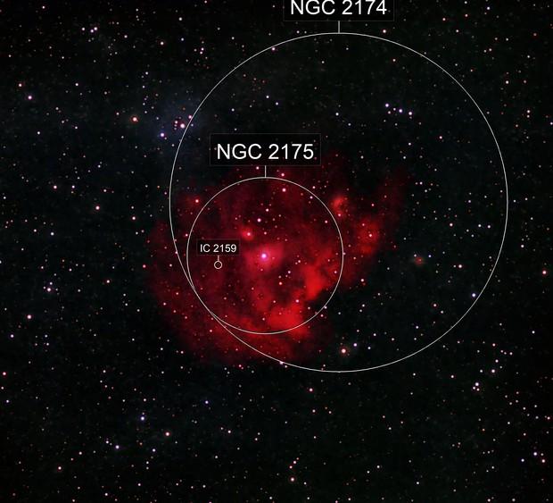 NGC 2174 - The Monkey Head