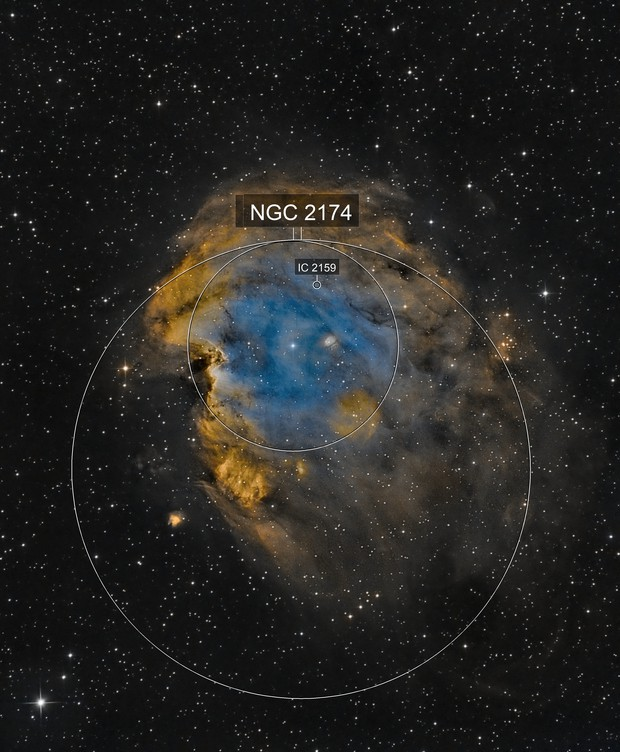 NGC 2174 - Monkey Head Nebula (SHO)