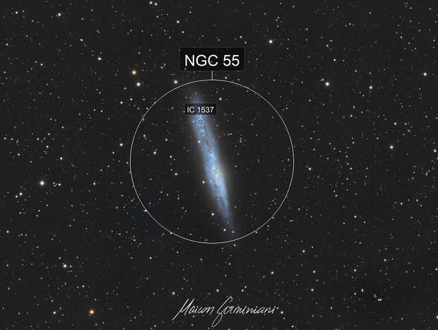 NGC 55