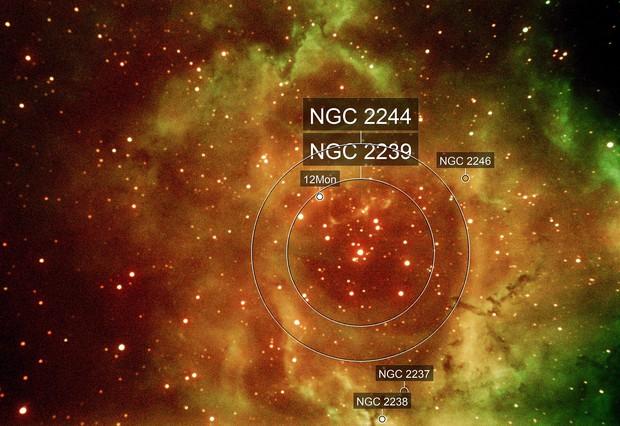 Rozette nebula
