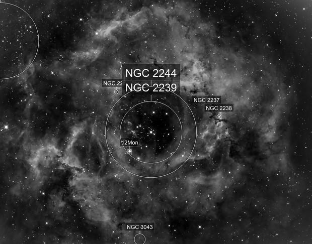 The Rosette Nebula NGC2237