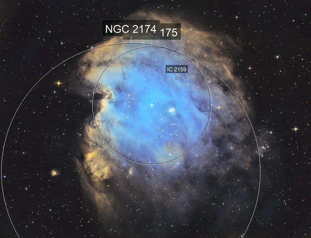 NGC 2174/2175 Monkeys Head Nebula Hubble Colors (SHO)