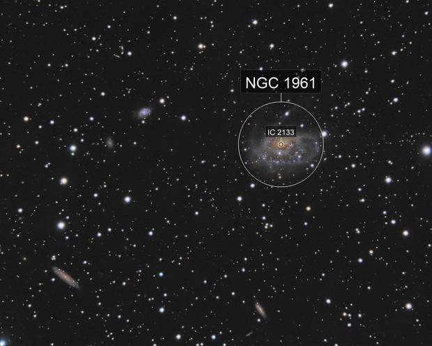 Arp 184  (NGC1961)