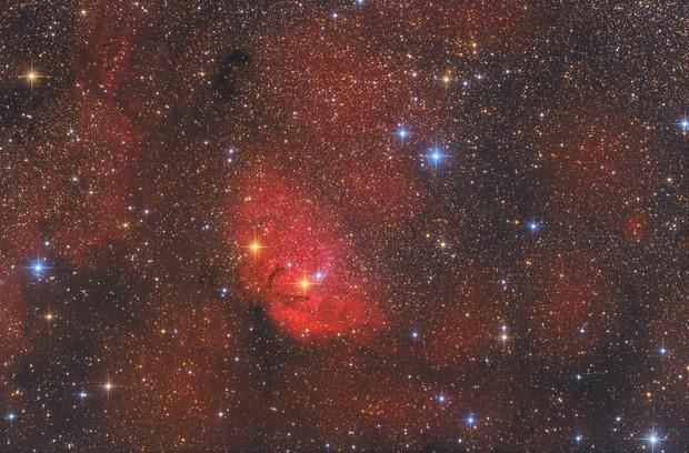 Tulip Nebula and Cygnus X-1