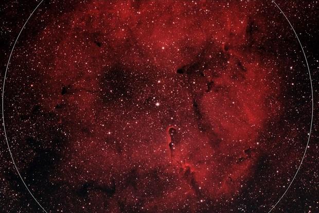 IC 1396 Elephant's Trunk Nebula