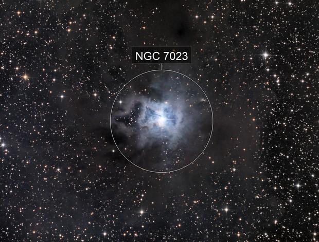 Iris Nebula (NGC7023)