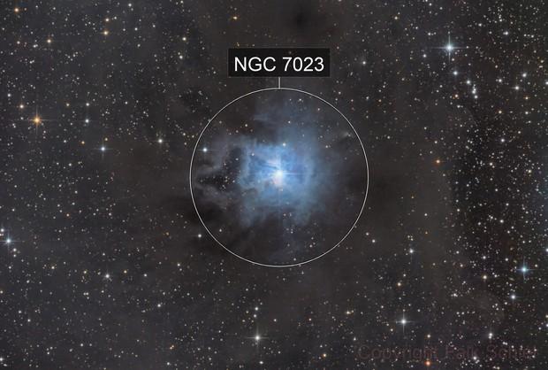 NGC 7023 / Iris Nebula