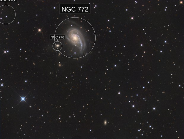 NGC772 and NGC770 (ARP78) in Aries
