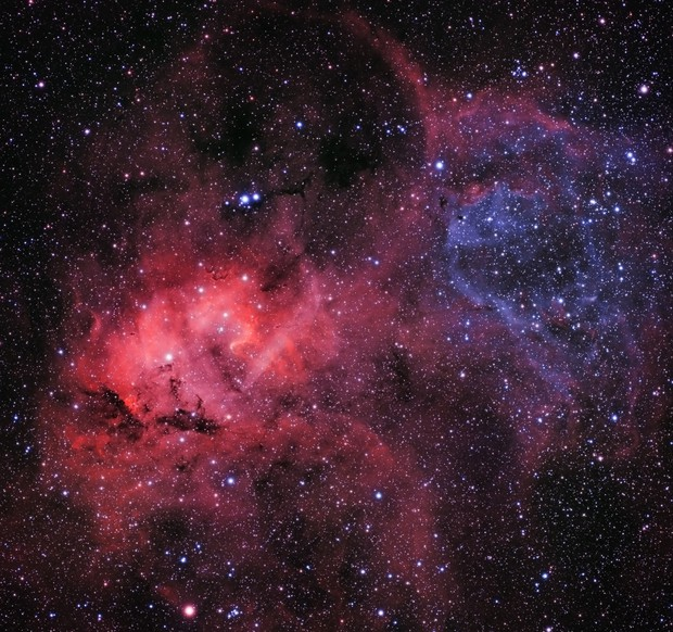The Lion Nebula