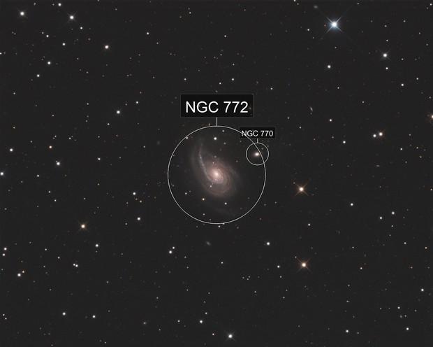 NGC772 LRGB
