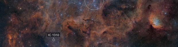 Tulip Nebula (Sh2-101) and surrounding region including Cygnus X1