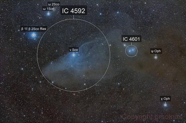 The Blue Horsehead Nebula Region - IC 4592 and Surroundings