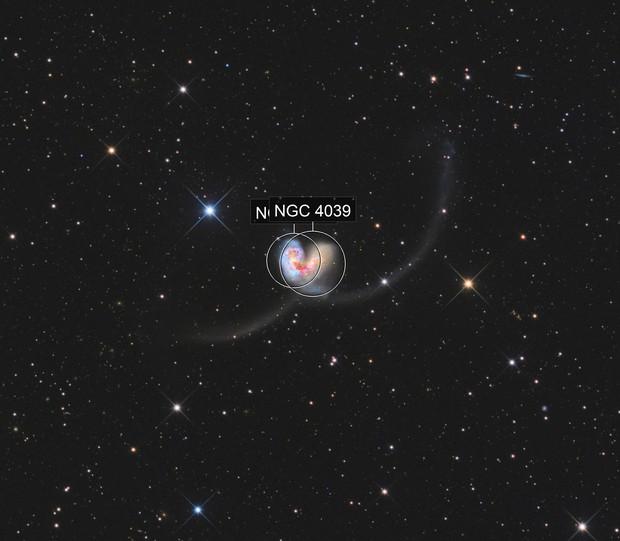 NGC 4038/39 The Antennae Galaxies - LRGB