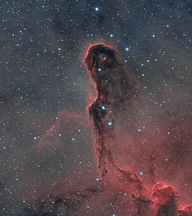 IC1396 Elephant Trunk Nebula Bi-Color