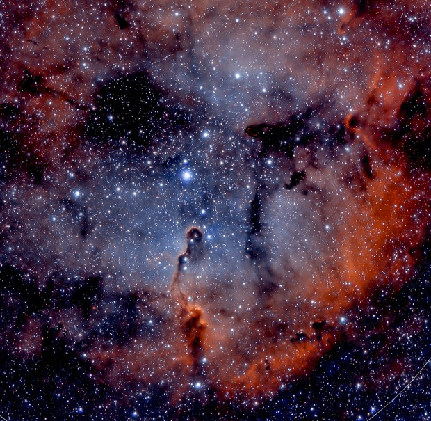 IC 1396 (Elephant's trunk nebula)