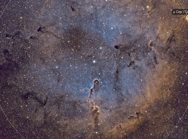IC1396 Elephant Trunk-SHO