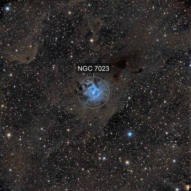 NGC 7023, Irisnebel