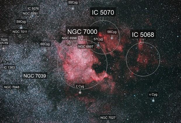 North American Nebula (NGC 7000) and the Pelican Nebula